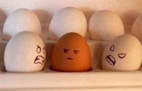 Расизм в отдельно взятом холодильнике
