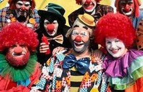 Цирковой бизнес: от топ-менеджеров до ребрендинга. ФОТО