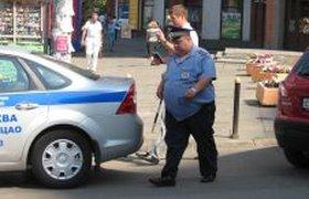 Полицейский колобок