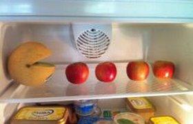 Идея для прикола в офисном холодильнике