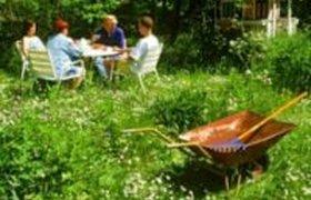 Большинство россиян собираются отдыхать на даче этим летом