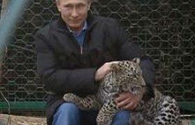 """Параноик, мастер слова и """"дорогой брат"""" - что еще говорят о Путине в мире"""