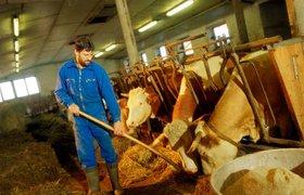 """Региональные фермеры рассказали, что им нужно, чтобы """"накормить страну"""""""