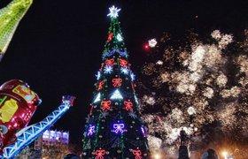 69% россиян встретят Новый год дома