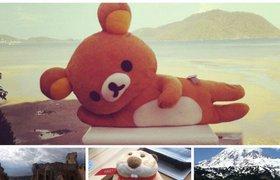 Путешествия игрушек: зачем компании заводят корпоративные талисманы