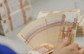 Экономист: конвертация валюты из Резервного фонда - хитрый способ обеспечить деньгами госкорпорации