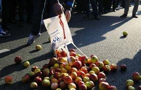 Польские садоводы заявили, что нашли замену России для сбыта яблок