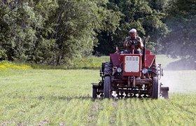 Фермеры рассказали, при каких условиях им помогут гранты от правительства
