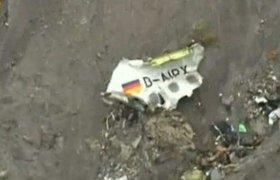 Летчик о действиях второго пилота Airbus A320: Человек в адекватном состоянии на такое не пойдет