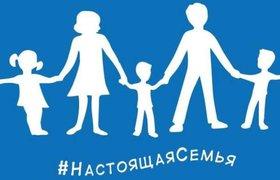 """""""Единая Россия"""" представила флаг для натуралов, позаимствовав его у Франции"""