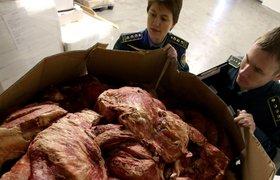В Самаре уничтожают первую партию запрещенных в России продуктов