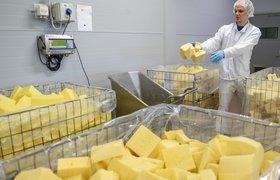 10 тонн санкционного сыра  раздавят катком в Белгороде