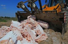 В Госдуме не видят перспектив у законопроекта КПРФ о раздаче санкционной еды