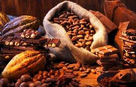 7 интересных фактов о шоколаде. ФОТО