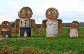 LavkaLavka ищет семью для изучения влияния фермерской еды на здоровье