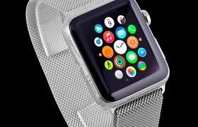 Ко дню рождения Путина изготовили эксклюзивные Apple Watch. ФОТО