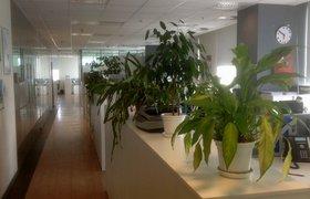 """Как работает """"умный офис"""" Schneider Electric в Москве. ФОТО"""