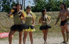 """Аналитик Эльдар Муртазин готовится предстать в костюме пчелы, проиграв пари главе """"Билайна"""""""
