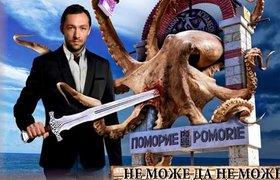 Осьминог, леди Гаганица, Че Гевара и другие болгарские предвыборные плакаты. ФОТО
