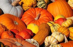 """""""Топовая"""" еда: простые рецепты из тыквы к Хэллоуину от президента Pro-Vision"""