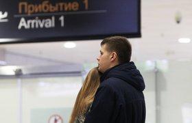 Опубликован список пассажиров самолета, упавшего в Египте. ФОТО. ВИДЕО