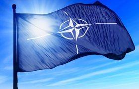 НАТО сделает заявление по инциденту с российским самолетом в Сирии