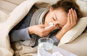 В Роспотребнадзоре призвали дезинфицировать гаджеты, чтобы уберечься от гриппа