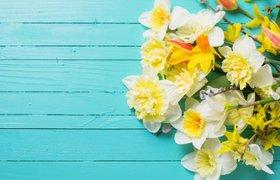 Как выбрать эффектный, но недорогой букет ко Дню всех влюбленных: советы флориста
