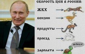 Скорость цен в России