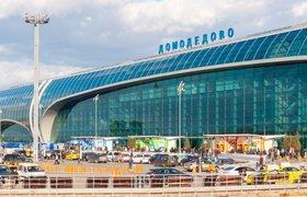 """В соцсетях обсуждают задержание владельца """"Домодедово"""": """"Вот такой диалог бизнеса с силовиками"""""""