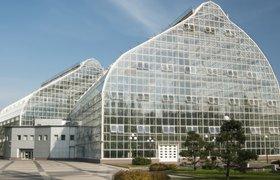 Вакансия дня: экскурсовод в Ботанический сад