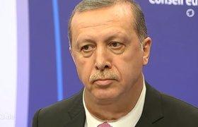 Немецкого посла вызвали в МИД Турции из-за сатирического видео с Эрдоганом. ВИДЕО