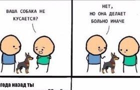 Собака - тролль 80 уровня