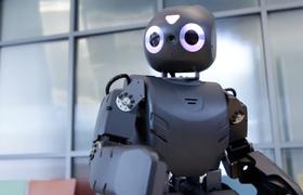 Дети будут учить роботов играть в AngryBirds