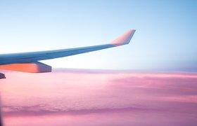 Лоукостер от S7 получит название Citrus и розовые самолеты