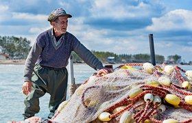 Сбербанк запустил сервис поиска работы для людей старшего возраста