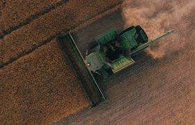 Тракторы-роботы и психоаналитик для коров: как работают современные фермеры