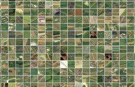 Facebook создаст карту плотности населения земли с помощью искусственного интеллекта