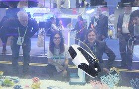 Летающие такси и робот-пекарь: чем удивила CES в 2019 году