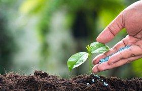 Акселератор GenerationS отберет проекты в области минеральных удобрений