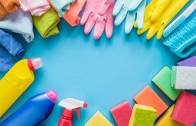 Бизнес на уборке: как блогеры превращают домашнюю работу в контент