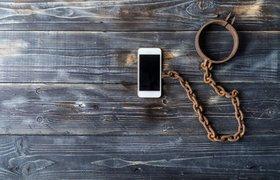 МВД решило заблокировать мобильную связь в тюрьмах — для борьбы с мошенничеством