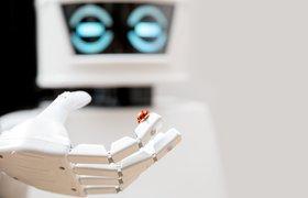 Дмитрий Гришин: «Мы смотрим на робототехнику не как на терминатора, бегающего с автоматом»