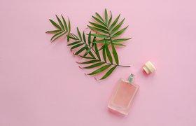 Дистанционный аромамаркетинг: кто и как может его использовать