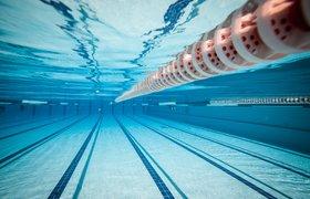 Как плавание влияет на наш мозг с точки зрения науки