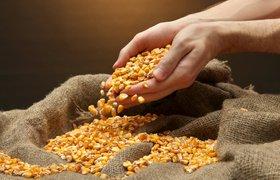 СМИ: Агрохолдинг ВТБ может купить Uber для зерна