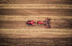 Еда из «облака»: как IT помогает развивать сельское хозяйство