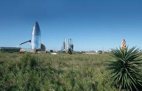 Илон Маск пообещал создать новый город в Техасе