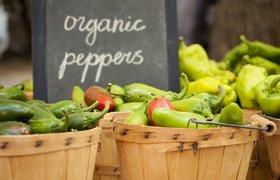 Какую роль в вашей кампании играет органическая реклама?