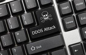 Количество DDoS-атак на образовательные учреждения в России в сентябре выросло на 118%